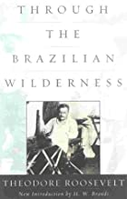 Cover of the book Through the Brazilian Wilderness by Theodore Roosevelt
