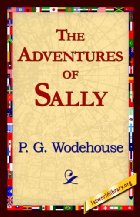 cover for book The Adventures of Sally