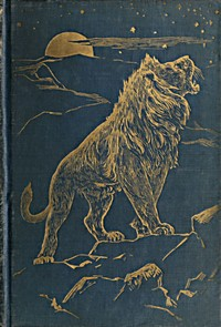 Cover of the book The animal story book by Andrew Lang