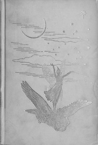 Cover of the book The grey fairy book by Andrew Lang