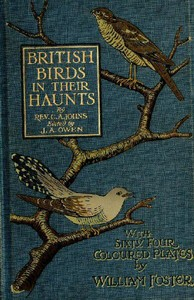 Cover of the book British birds in their haunts by C. A. (Charles Alexander) Johns
