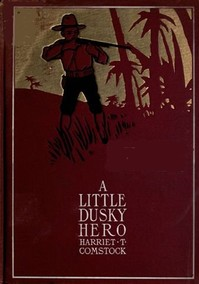 Cover of the book A little dusky hero by Harriet T. (Harriet Theresa) Comstock