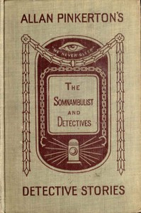 Cover of the book The somnambulist and the detective. The murderer and the fortune teller by Allan Pinkerton