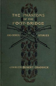 Cover of the book The phantoms of the foot-bridge, and other stories by Mary Noailles Murfree