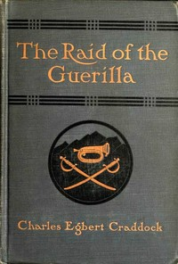 Cover of the book The raid of the guerilla, and other stories by Mary Noailles Murfree