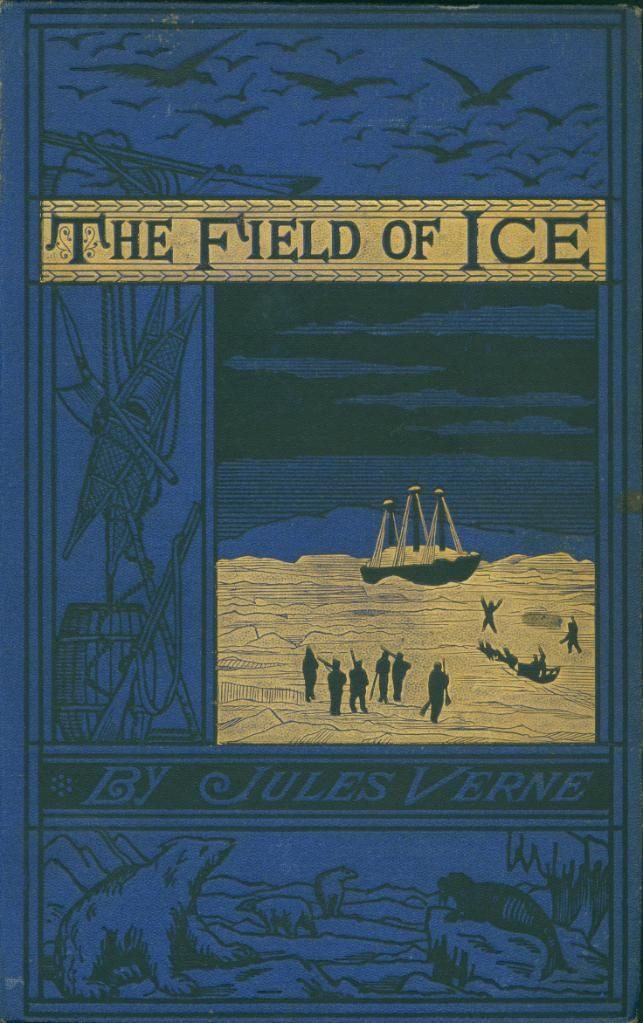 cover for book The Field of Ice
