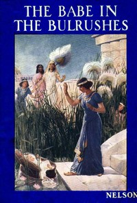 Cover of the book The Babe in the Bulrushes by Amy Steedman