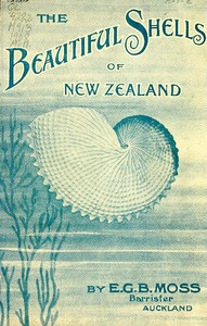 Cover of the book Beautiful Shells of New Zealand by Edward George Britton Moss