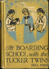 Cover of the book At Boarding School with the Tucker Twins by Nell Speed