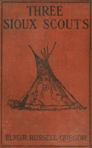 Cover of the book Three Sioux Scouts by Elmer Russell Gregor