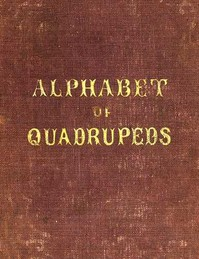 Cover of the book An Alphabet of Quadrupeds by Anonymous