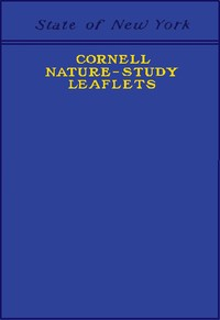 Cover of the book Cornell Nature-Study Leaflets by Various
