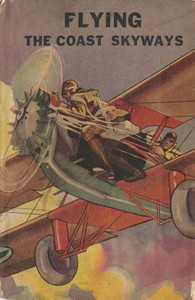 Cover of the book Flying the Coast Skyways by Ambrose Newcomb
