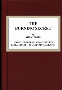 Cover of the book The Burning Secret by Stefan Zweig