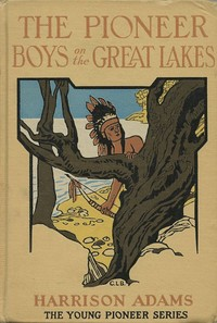 Cover of the book The Pioneer Boys on the Great Lakes by St. George Rathborne