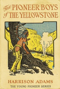 Cover of the book The Pioneer Boys of the Yellowstone by St. George Rathborne