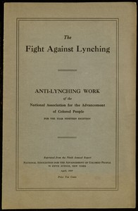 Cover of the book The Fight Against Lynching by Anonymous