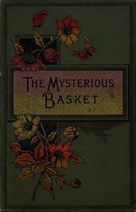 cover for book The Mysterious Basket, or The Foundling