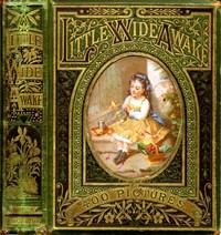 cover for book Little Wideawake