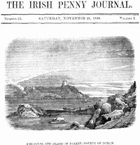 cover for book The Irish Penny Journal, Vol. 1 No. 21, November 21, 1840