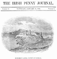cover for book The Irish Penny Journal, Vol. 1 No. 29, January 16, 1841