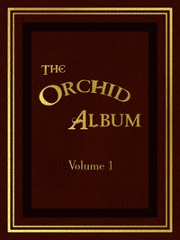 cover for book The Orchid Album, Volume 1