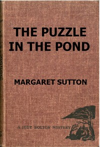 cover for book The Puzzle in the Pond