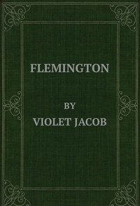 cover for book Flemington