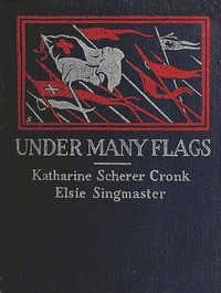 cover for book Under Many Flags