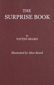 cover for book The Surprise Book