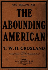 cover for book The Abounding American