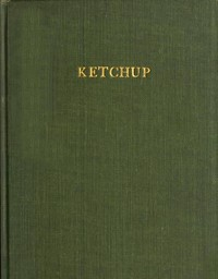 cover for book Ketchup