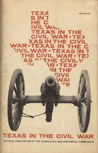 cover for book Texas in the Civil War