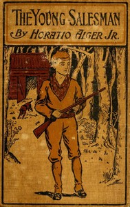 cover for book The Young Salesman