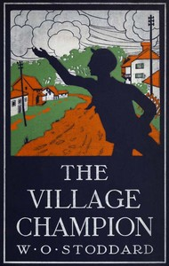 cover for book The Village Champion