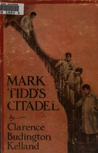 cover for book Mark Tidd's Citadel