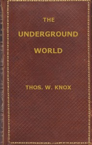 cover for book The Underground World: