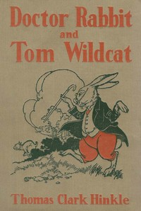 Cover of the book Doctor Rabbit and Tom Wildcat by Thomas Clark Hinkle