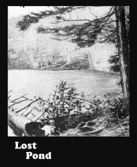 Cover of the book Lost Pond by Henry Abbott