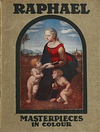 Cover of the book Raphael by Paul G. (Paul George) Konody