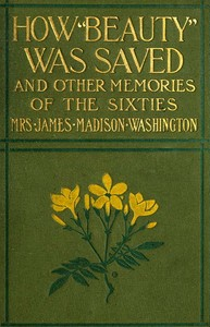 Cover of the book How Beauty was saved, and other memories of the sixties by Amanda Alcenia Strickland Washington