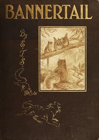 Cover of the book Bannertail : the story of a graysquirrel by Ernest Thompson Seton